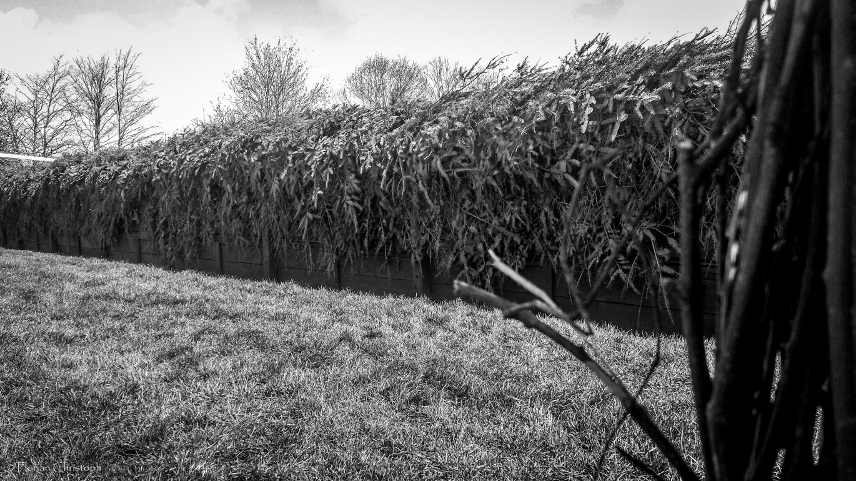 Becher's Brook
