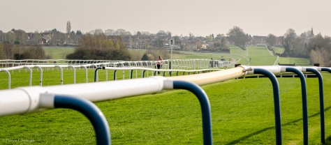Leicester Racecourse home straight