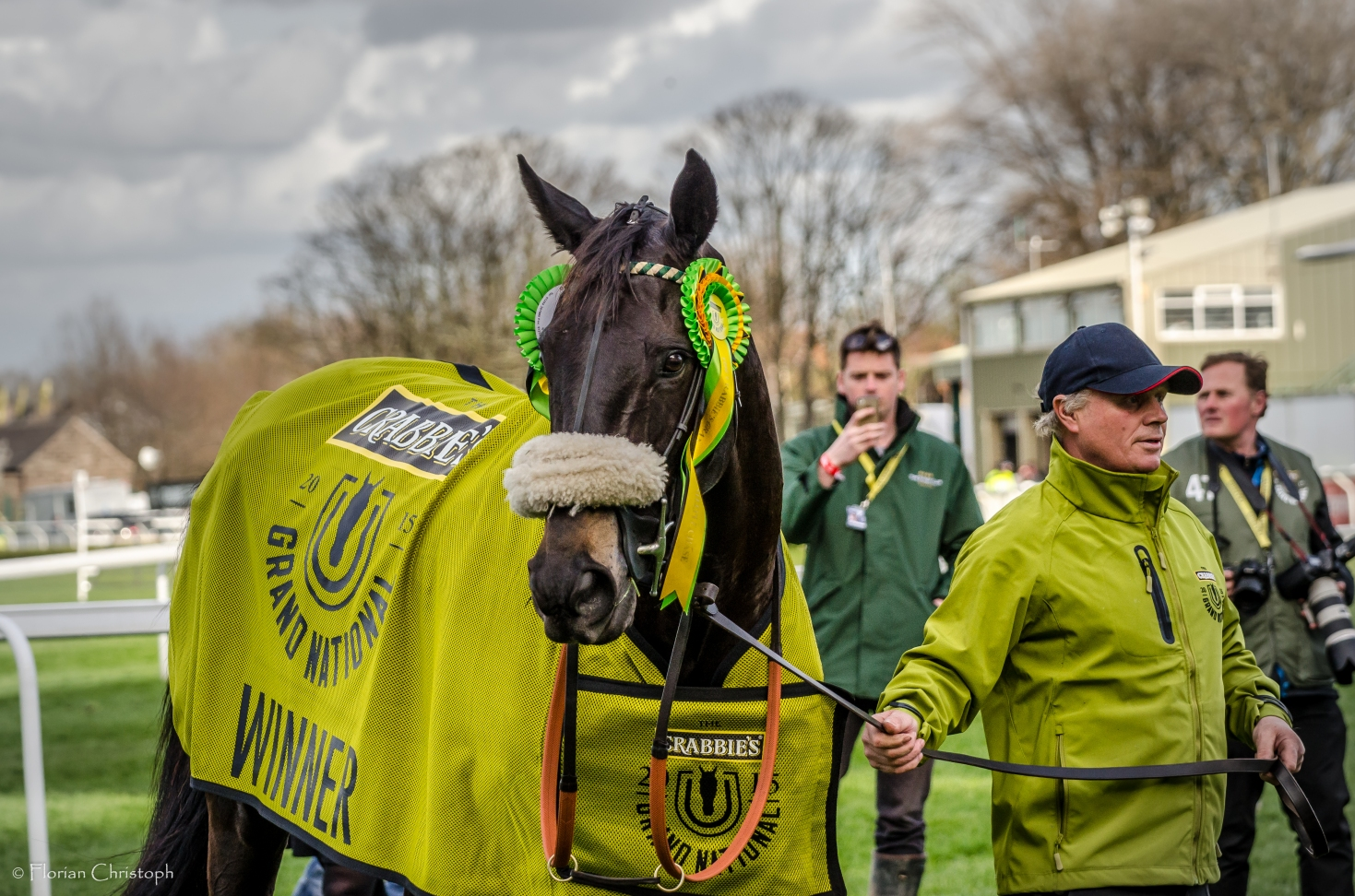 Grand National winner Many Clouds