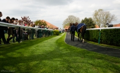 Newmarket Rowley Mile pre-parade ring