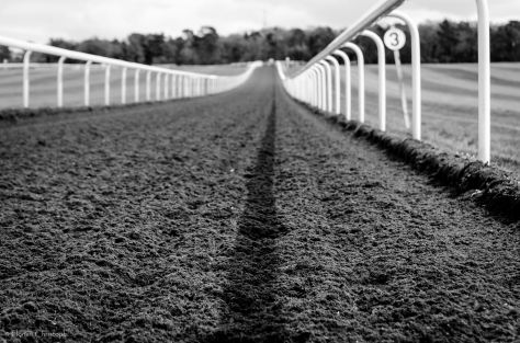 Warren Hill