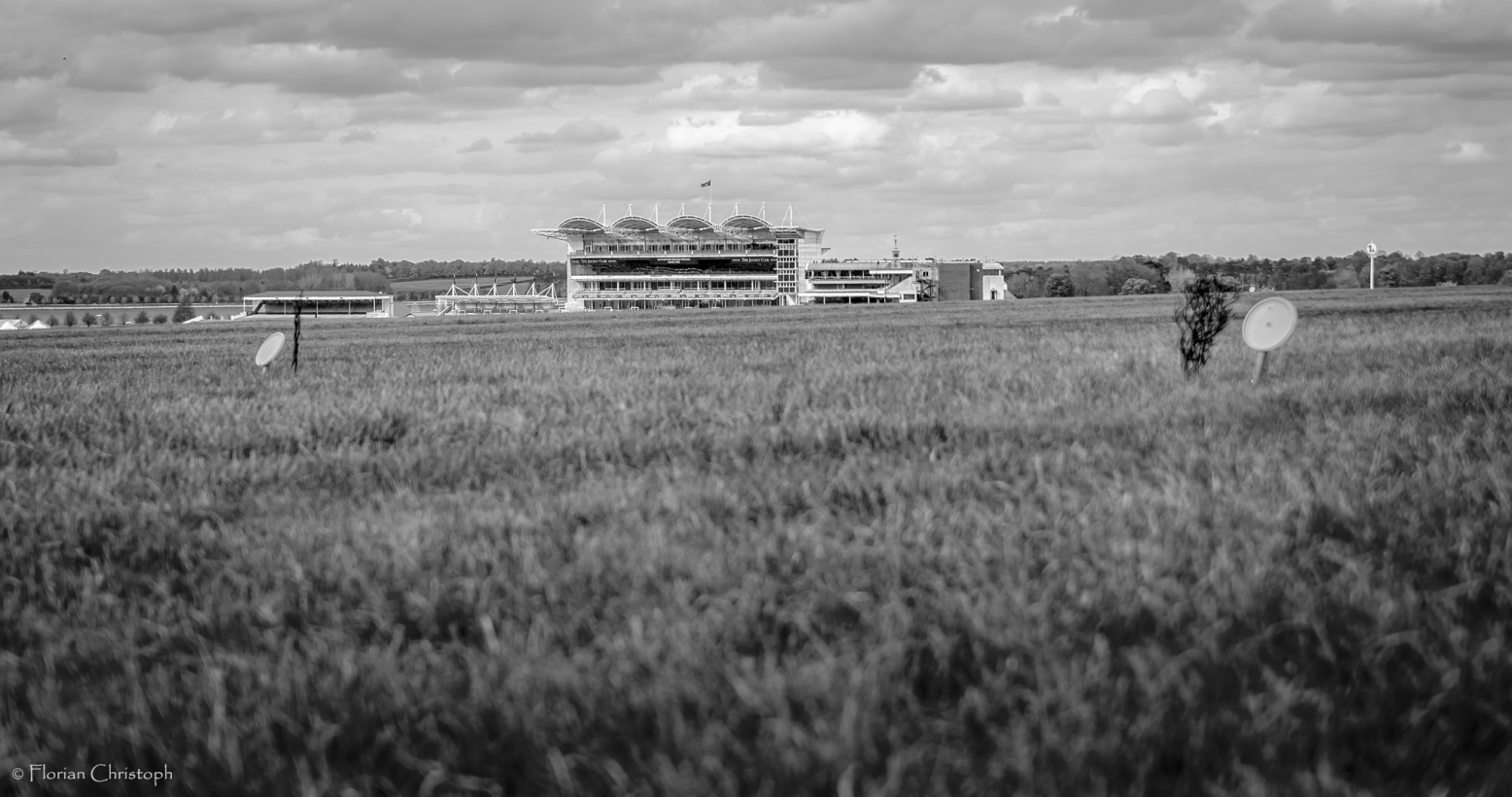 Newmarket Rowley Mile