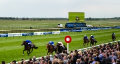 Newmarket Rowley Mile tight finish