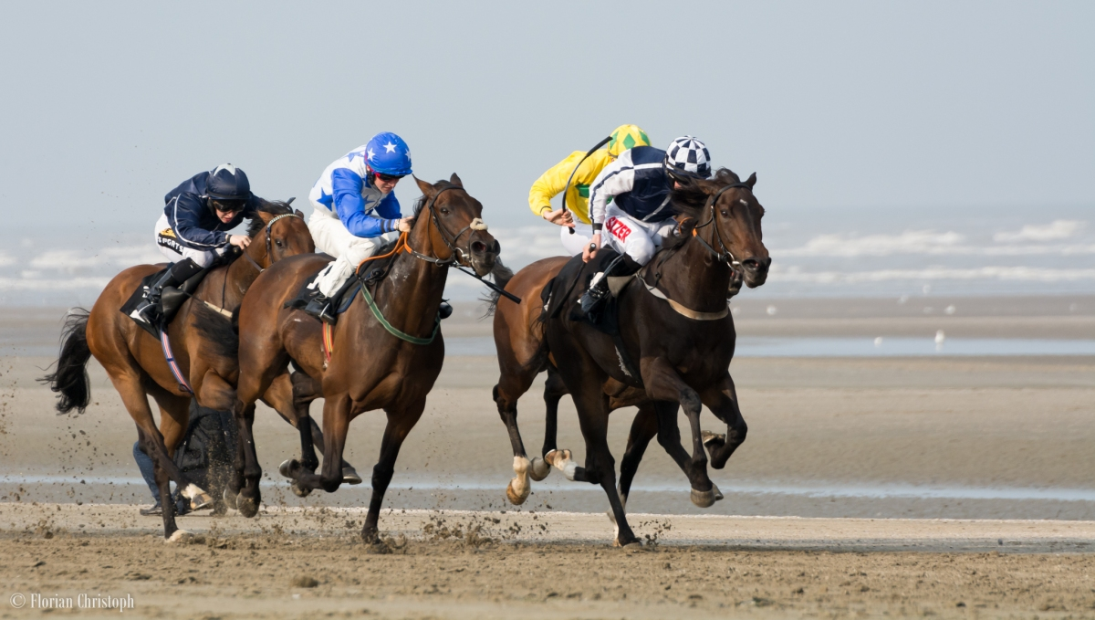 Laytown: Racing on the Beach