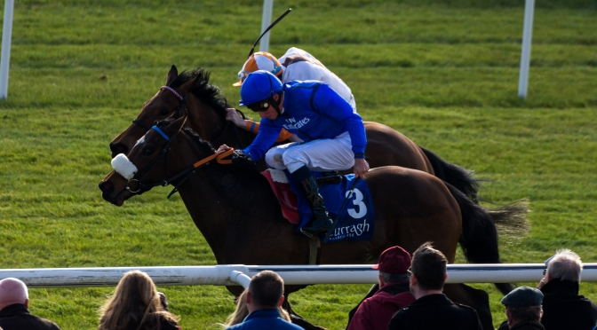 Curragh Opener – Review