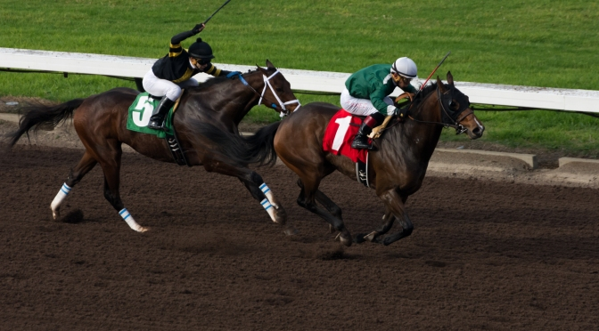 Preview: Pegasus World Cup