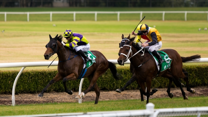 Racecourse Review: Canterbury Park